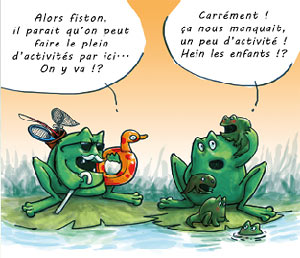 Grenouilles illustration